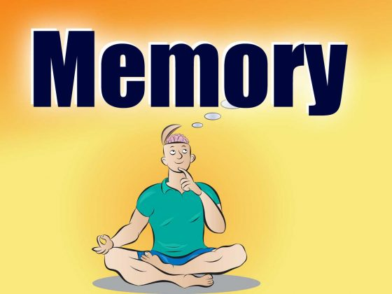 Memory Matters Talks